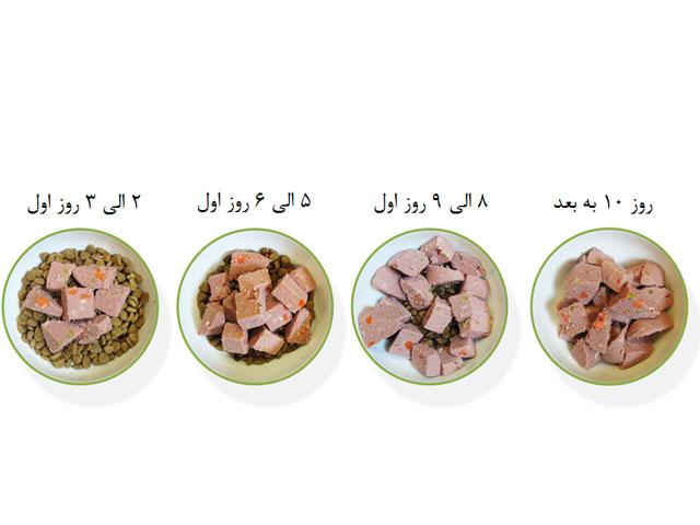 تغییر غذای توله سگ