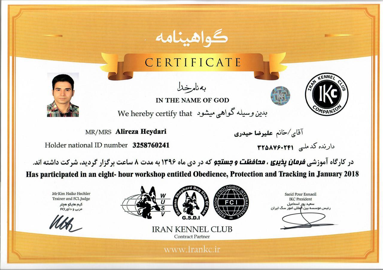 Certificate-2